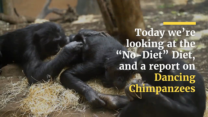 frame%20Chimpanzees